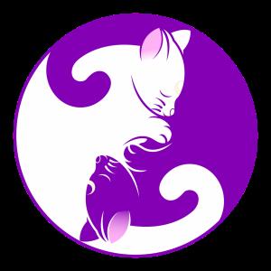 cat-1539610_1280